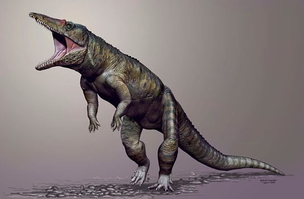Giant walking crocodile terrorised Earth before dinosaurs