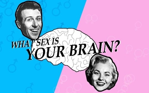 Science Museum row: Ditching this sexist brain quiz ain't rocket science