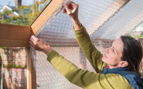 How to insulate your greenhouse this winter and keep tender plants frost-free