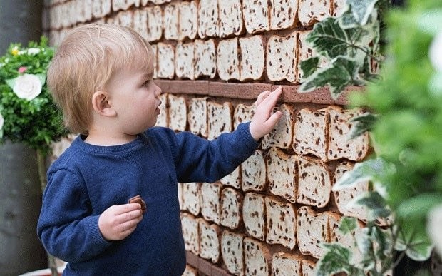 World's first garden made from cake opens in London