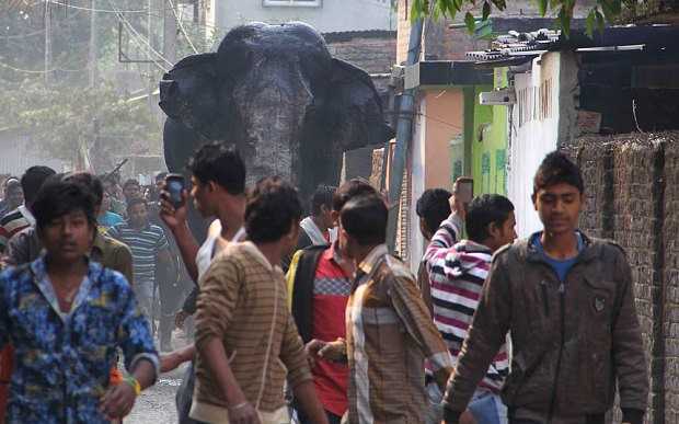 Wild elephant rampages through Indian town
