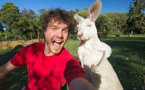 Real life Dr. Dolittle Allan Dixon is animal selfie king, in pictures - Telegraph