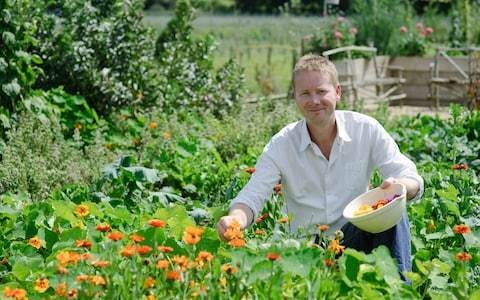 How to start your own veg garden - and what to do every month