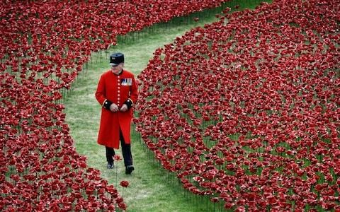 Savers can earn interest and honour the fallen with new poppy accounts – but act fast