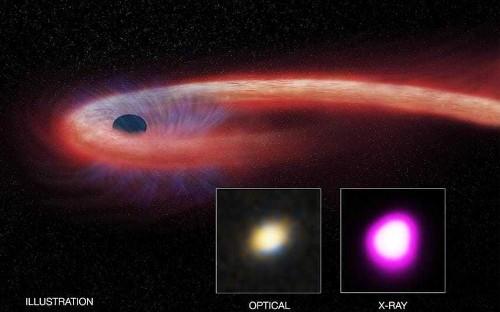 Binge Eater: Black hole taking record-breaking decade to devour star