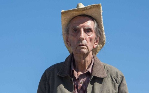 Lucky review: Harry Dean Stanton's final role is a low-key, life-affirming charm