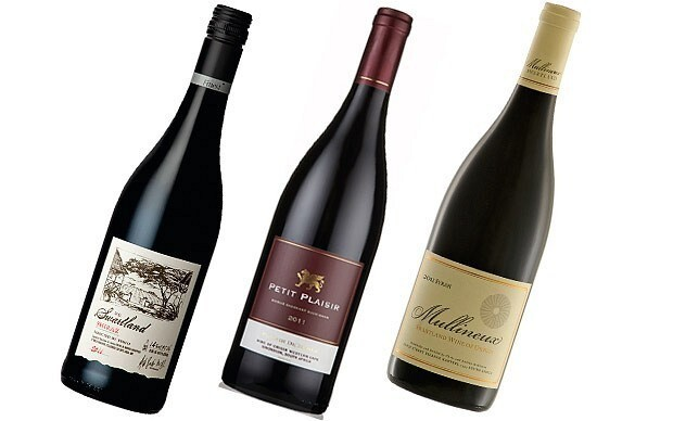 Wine Review: South African shiraz