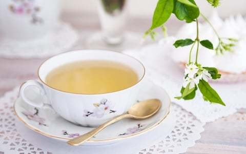 Green tea may hold the answer to rise of drug-resistant superbugs
