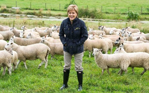 SNP ministers get loan sums wrong as farm payment shambles descends into 'utter farce'