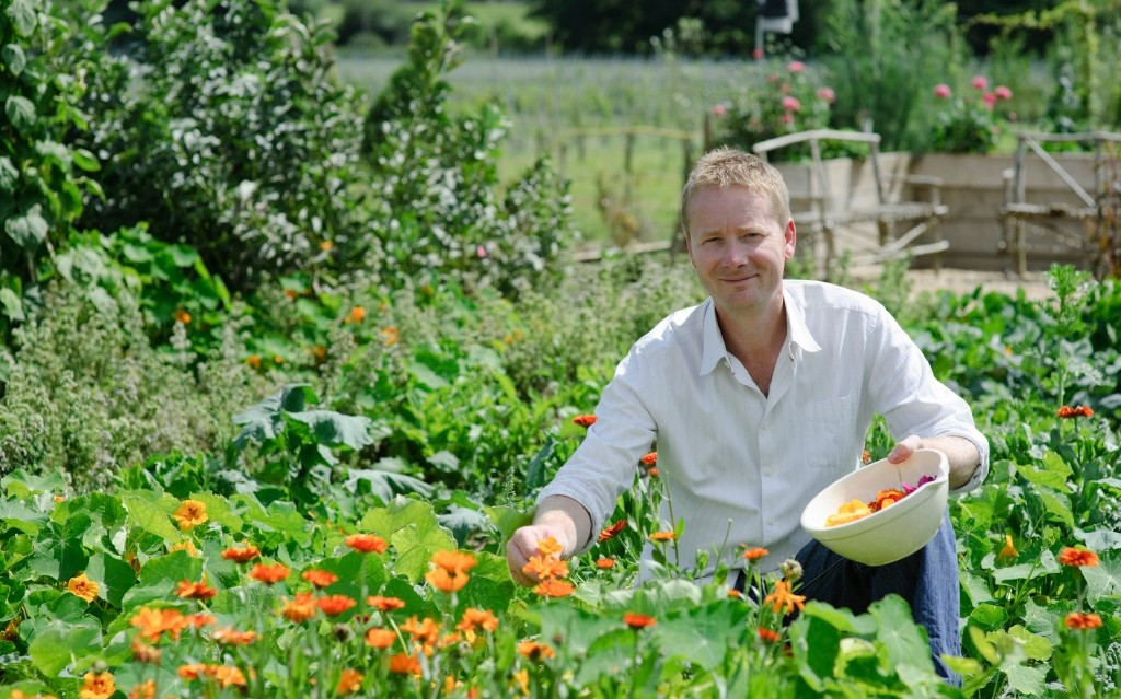 8 gardening tips for making the most of your vegetable garden during isolation