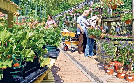 Why supermarkets are jumping on the gardening bandwagon