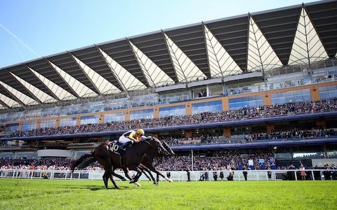 Storm threat to Ascot 2019 fading as course clerk hails 'beautiful ground'
