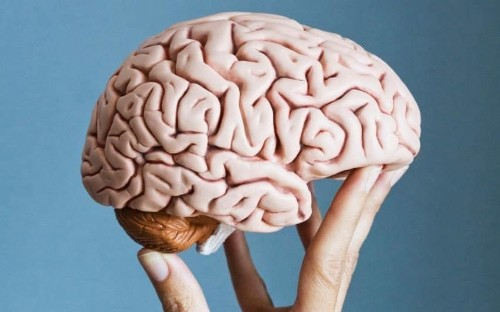 Forget sudokus - here's how to keep your brain young