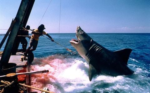 Bruce, Jaws's original rubber shark, restored by effects expert