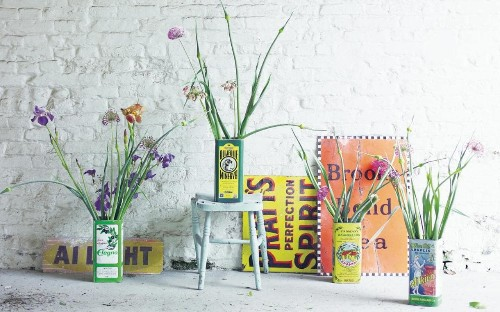 How to use houseplants to decorate your home
