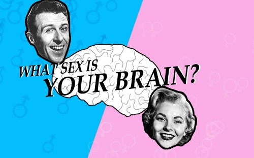 Why is it suddenly considered progressive to say women have pink brains?