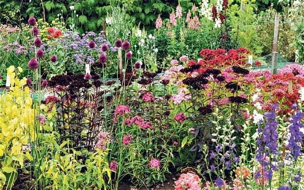 Garden Again - Magazine cover