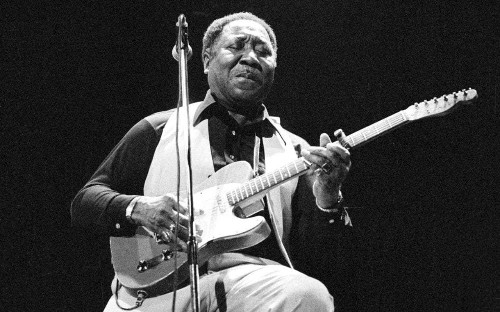 Muddy Waters: celebrating a great blues musician