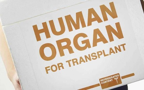 Liver transplant breakthrough to halve the waiting list, say experts