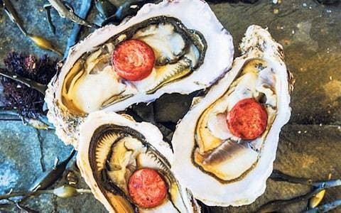 Chilled oysters with warm chorizo recipe