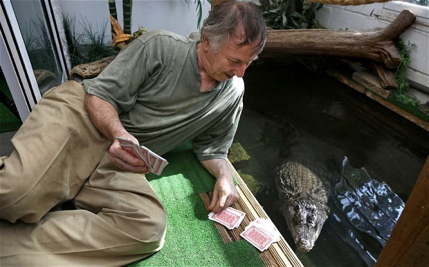 Retired prison officer shares home with pet crocodile