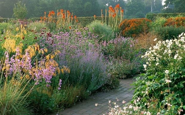 How to look after herbaceous borders