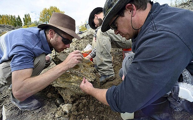 Mammoth tusk unearthed in Idaho sparking hunt for full skeleton