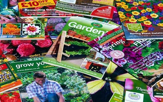 Gardening calendar: order seed and sow onions