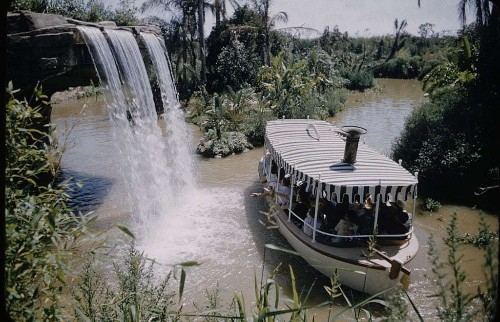 Showgirls, stampedes, and an escaped tiger: what Disneyland was like in the 1950s