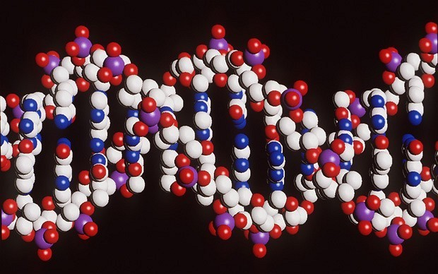 Letter from scientist who discovered DNA sells for $5.3m
