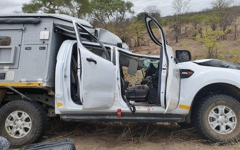 Swiss tourist fights for his life after being crushed by giraffe that fell onto his jeep in Kruger National park