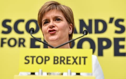 Nicola Sturgeon claims SNP members did not 'necessarily' vote to dump pound quickly