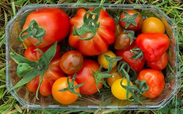How to make supermarket tomatoes taste home-grown