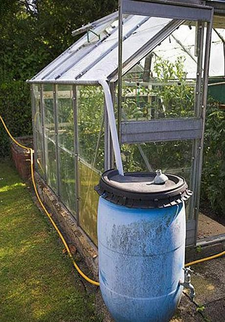 Greenhouse guide: 13 incredibly useful tips