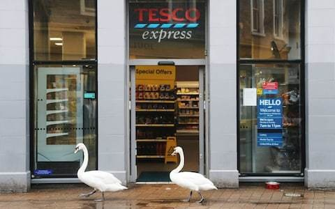 Tesco Bank must spare its customers from a life sentence in mortgage prison
