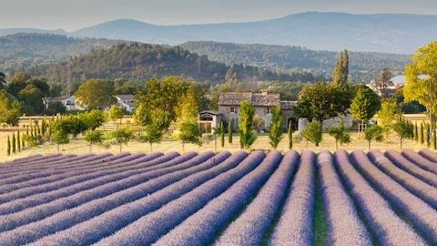 Win a trip to Provence, courtesy of Headwater Holidays