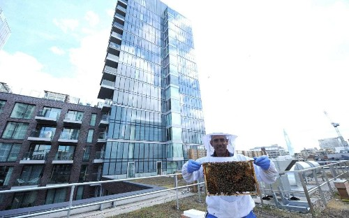 Honey, I'm home: why a resident beekeeper is the latest buzz in luxury property