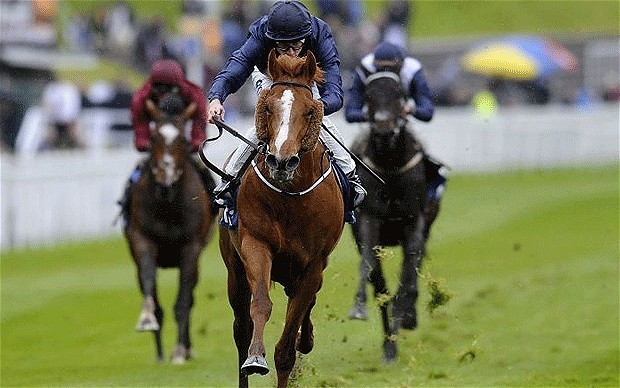 Chester Vase winner Ruler Of The World as low as 6-1 for Investec Derby