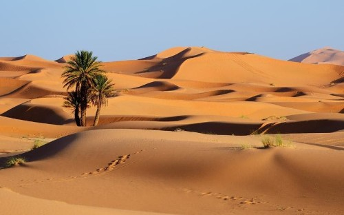 The best desert holidays and tours