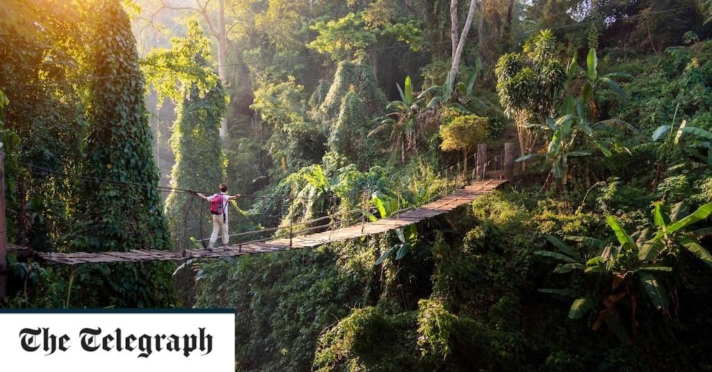 Thailand mulls compulsory travel insurance for all visitors