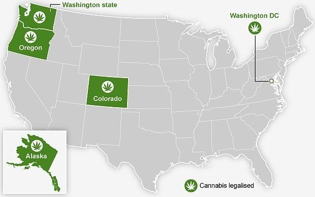 American Indian tribes plan to make marijuana a cash crop