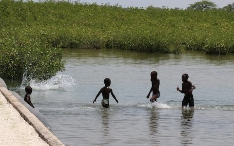 World must invest $1.8 trillion in mangroves, early warning systems and infrastructure to hold back climate change