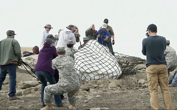 Museum calls in National Guard to airlift rare baby dinosaur fossil