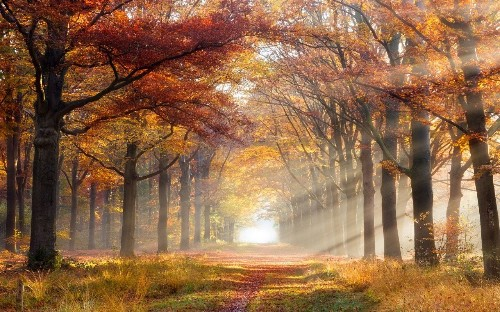 How to take the ultimate autumn photo (and have yours featured by us)