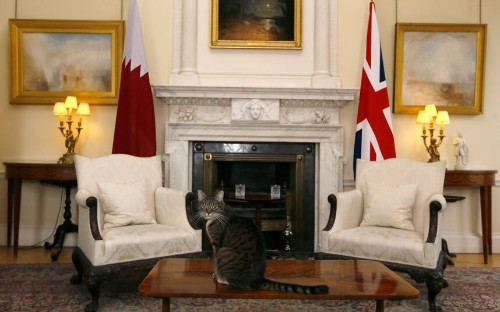 The pets that have lived in Downing Street, in pictures - Telegraph