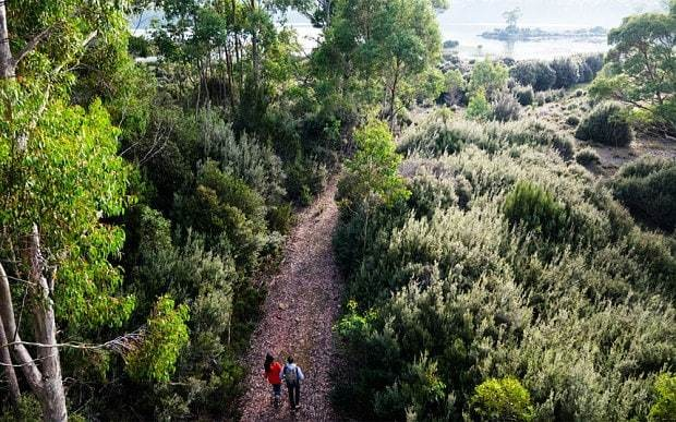 Tasmania's best wilderness retreats: breathing the purest air on the planet
