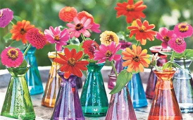 Zinnias: late-summer superstars