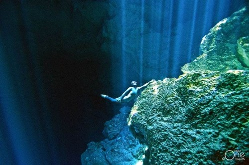 Freediving on a single breath, in pictures - Telegraph