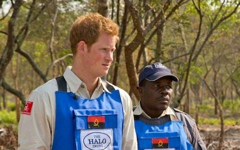 Prince Harry to woo Angola into becoming first new Commonwealth member in a decade during Africa tour