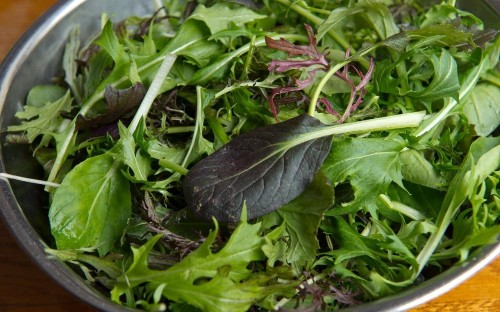 Salmonella warning over bagged salad leaves
